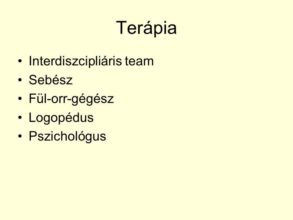 Terápia Interdiszcipliáris team Sebész Fül-orr-gégész Logopédus Pszichológus