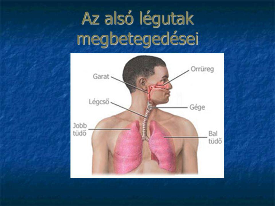Az alsó légutak megbetegedései