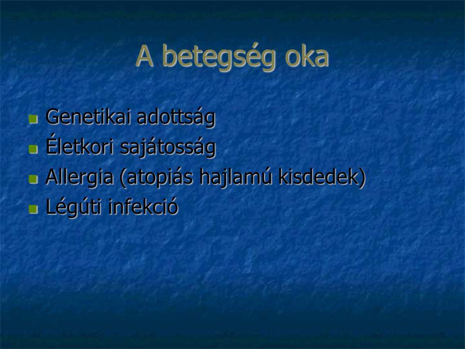 A betegség oka Genetikai adottság Genetikai adottság Életkori sajátosság Életkori sajátosság Allergia (atopiás hajlamú kisdedek) Allergia (atopiás hajlamú kisdedek) Légúti infekció Légúti infekció