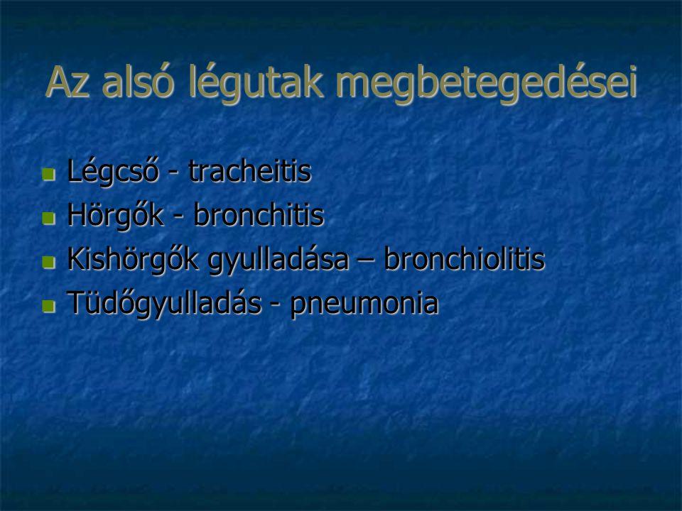 Légcső - tracheitis Légcső - tracheitis Hörgők - bronchitis Hörgők - bronchitis Kishörgők gyulladása – bronchiolitis Kishörgők gyulladása – bronchioli