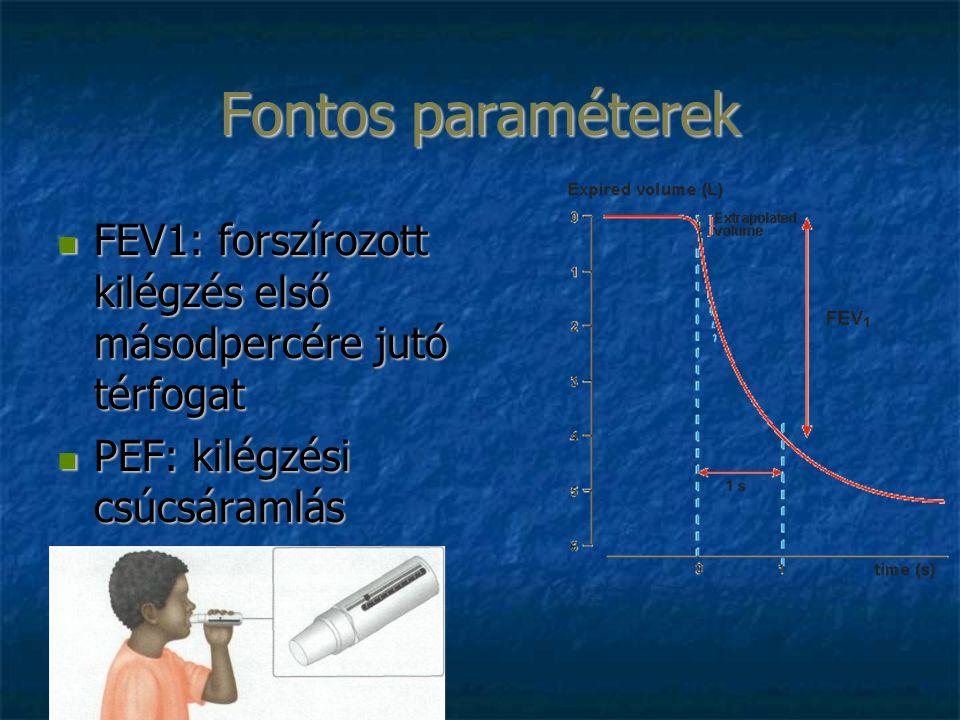 Fontos paraméterek FEV1: forszírozott kilégzés első másodpercére jutó térfogat FEV1: forszírozott kilégzés első másodpercére jutó térfogat PEF: kilégz