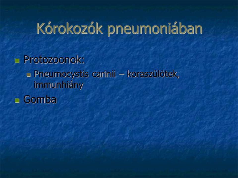 Kórokozók pneumoniában Protozoonok: Protozoonok: Pneumocystis carinii – koraszülötek, immunhiány Pneumocystis carinii – koraszülötek, immunhiány Gomba Gomba