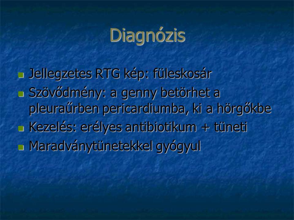 Diagnózis Jellegzetes RTG kép: füleskosár Jellegzetes RTG kép: füleskosár Szövődmény: a genny betörhet a pleuraűrben pericardiumba, ki a hörgőkbe Szövődmény: a genny betörhet a pleuraűrben pericardiumba, ki a hörgőkbe Kezelés: erélyes antibiotikum + tüneti Kezelés: erélyes antibiotikum + tüneti Maradványtünetekkel gyógyul Maradványtünetekkel gyógyul
