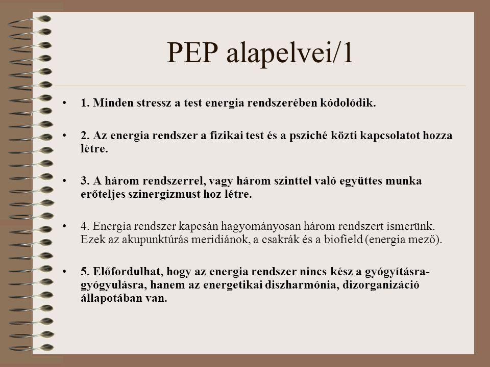 PEP alapelvei/1 1. Minden stressz a test energia rendszerében kódolódik. 2. Az energia rendszer a fizikai test és a psziché közti kapcsolatot hozza lé