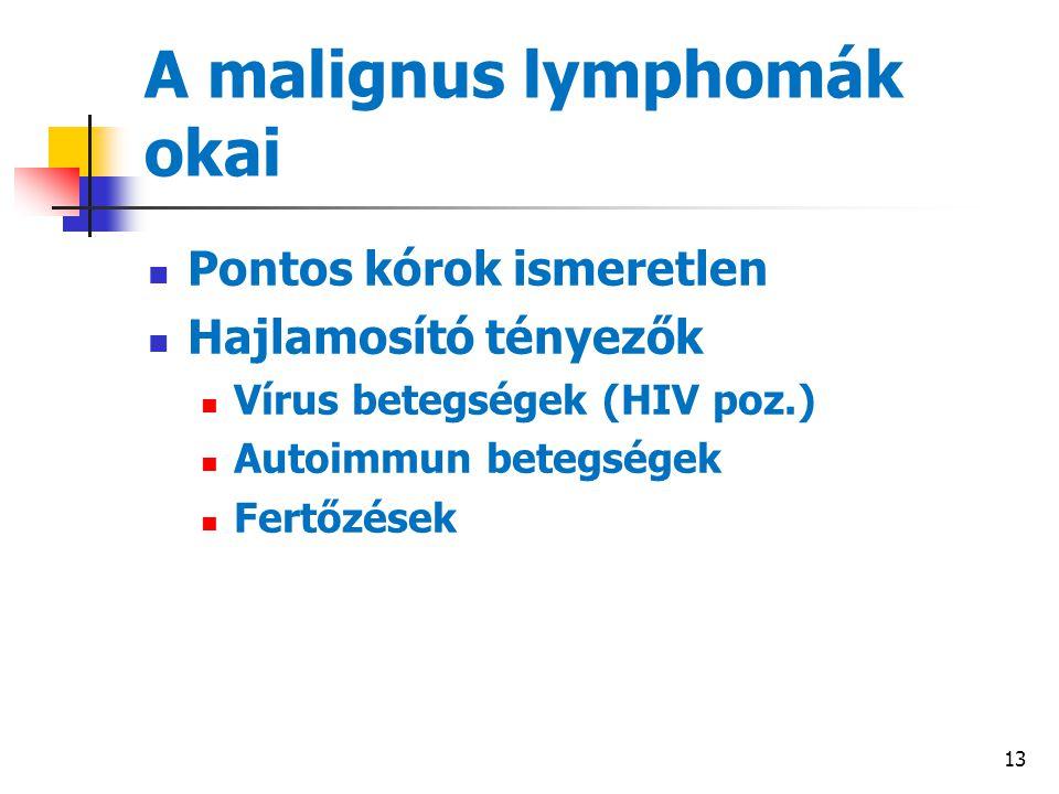 13 A malignus lymphomák okai Pontos kórok ismeretlen Hajlamosító tényezők Vírus betegségek (HIV poz.) Autoimmun betegségek Fertőzések