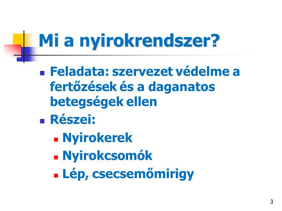 14 Gyakoriság Non-Hodgkin lymphoma ~ 2200 új beteg/év Hodgkin lymphoma ~ 300 új beteg/év