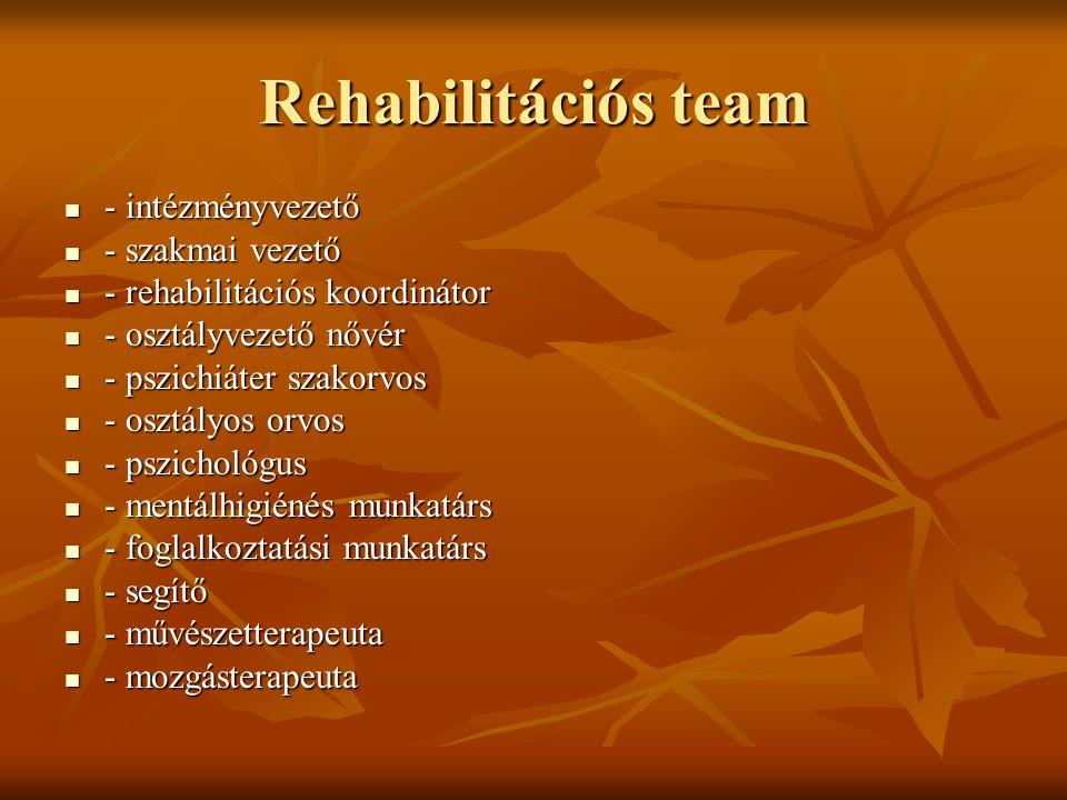 Rehabilitációs team - intézményvezető - intézményvezető - szakmai vezető - szakmai vezető - rehabilitációs koordinátor - rehabilitációs koordinátor -