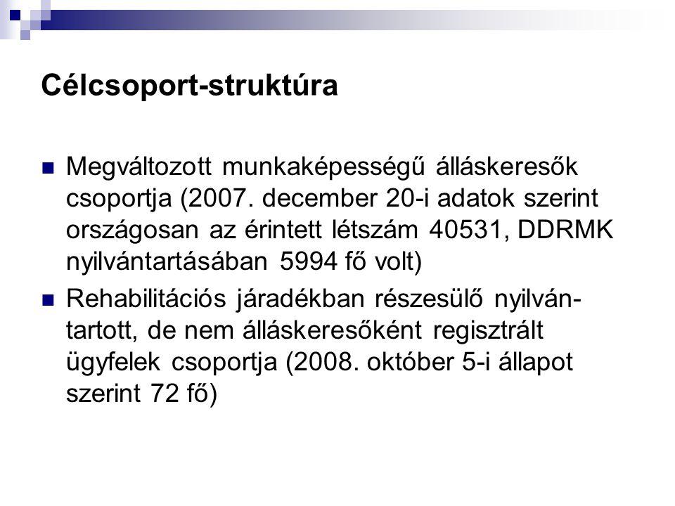 Célcsoport-struktúra Megváltozott munkaképességű álláskeresők csoportja (2007. december 20-i adatok szerint országosan az érintett létszám 40531, DDRM