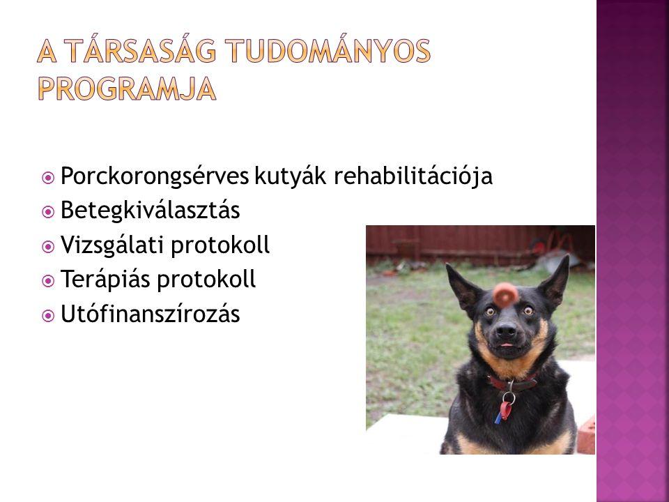  Porckorongsérves kutyák rehabilitációja  Betegkiválasztás  Vizsgálati protokoll  Terápiás protokoll  Utófinanszírozás