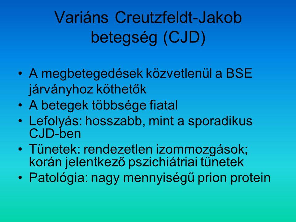 Variáns Creutzfeldt-Jakob betegség (CJD) A megbetegedések közvetlenül a BSE járványhoz köthetők A betegek többsége fiatal Lefolyás: hosszabb, mint a s