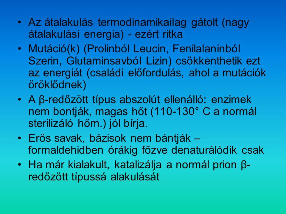 Variáns Creutzfeldt-Jakob betegség (CJD) A megbetegedések közvetlenül a BSE járványhoz köthetők A betegek többsége fiatal Lefolyás: hosszabb, mint a sporadikus CJD-ben Tünetek: rendezetlen izommozgások; korán jelentkező pszichiátriai tünetek Patológia: nagy mennyiségű prion protein