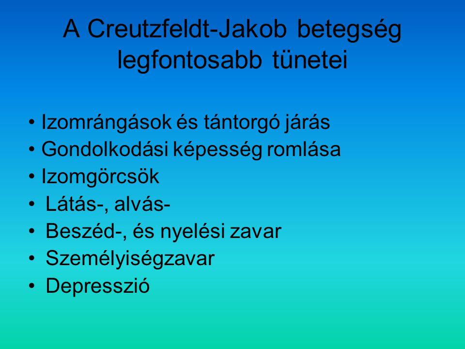 A Creutzfeldt-Jakob betegség legfontosabb tünetei Izomrángások és tántorgó járás Gondolkodási képesség romlása Izomgörcsök Látás-, alvás- Beszéd-, és