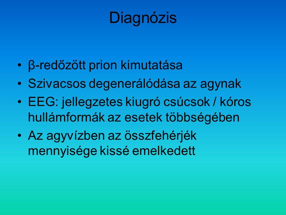 Diagnózis β-redőzött prion kimutatása Szivacsos degenerálódása az agynak EEG: jellegzetes kiugró csúcsok / kóros hullámformák az esetek többségében Az