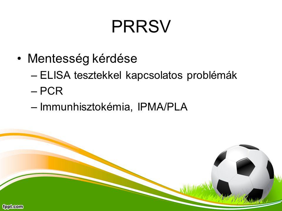 PRRSV Mentesség kérdése –ELISA tesztekkel kapcsolatos problémák –PCR –Immunhisztokémia, IPMA/PLA