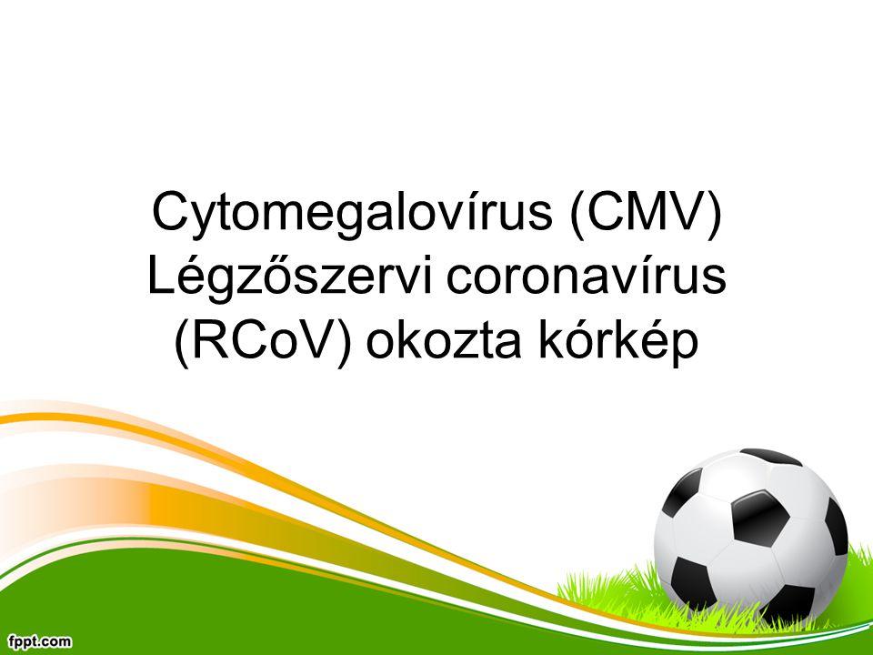 Cytomegalovírus (CMV) Légzőszervi coronavírus (RCoV) okozta kórkép