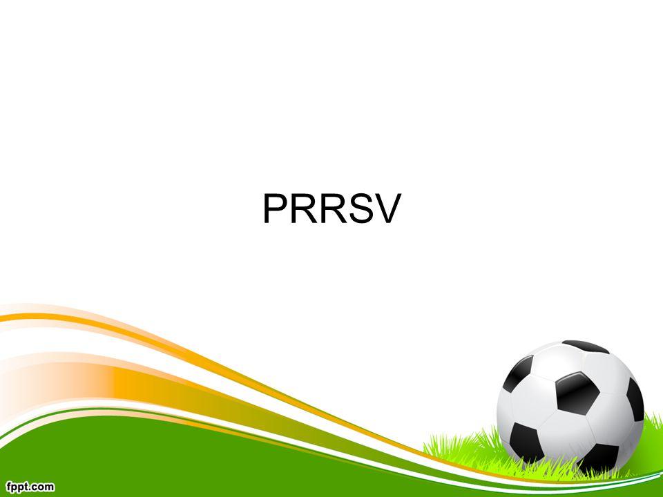 PRRSV