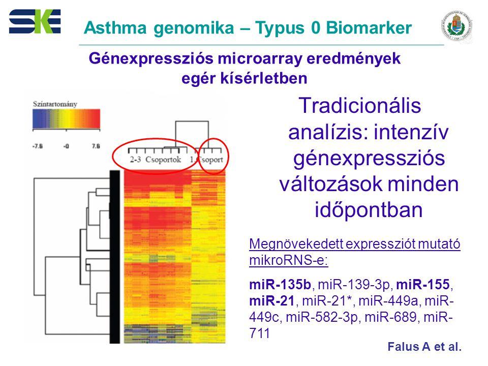 Génexpressziós microarray eredmények egér kísérletben Tradicionális analízis: intenzív génexpressziós változások minden időpontban Megnövekedett expressziót mutató mikroRNS-e: miR-135b, miR-139-3p, miR-155, miR-21, miR-21*, miR-449a, miR- 449c, miR-582-3p, miR-689, miR- 711 Asthma genomika – Typus 0 Biomarker Falus A et al.