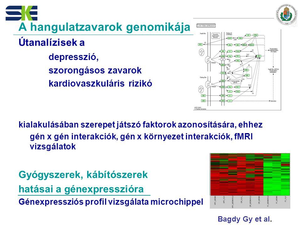 A hangulatzavarok genomikája Útanalízisek a depresszió, szorongásos zavarok kardiovaszkuláris rizikó kialakulásában szerepet játszó faktorok azonosítására, ehhez gén x gén interakciók, gén x környezet interakciók, fMRI vizsgálatok Gyógyszerek, kábítószerek hatásai a génexpresszióra Génexpressziós profil vizsgálata microchippel Bagdy Gy et al.