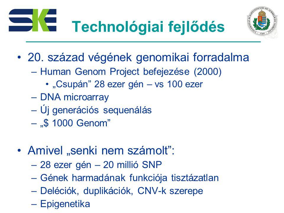 Technológiai fejlődés 20.