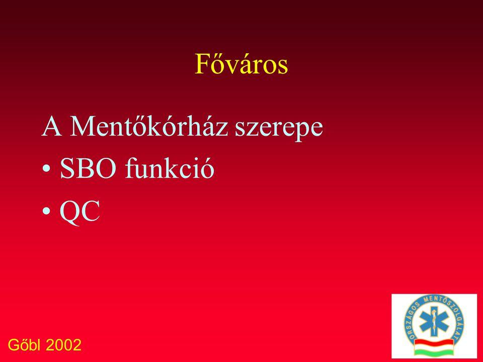 Gőbl 2002 Főváros A Mentőkórház szerepe SBO funkció QC