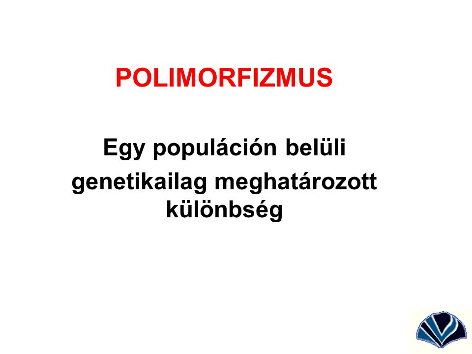 POLIMORFIZMUS Egy populáción belüli genetikailag meghatározott különbség