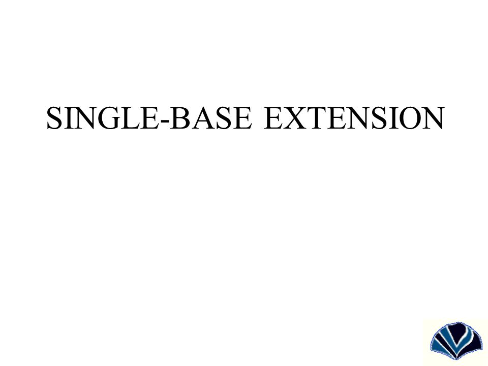 SINGLE-BASE EXTENSION