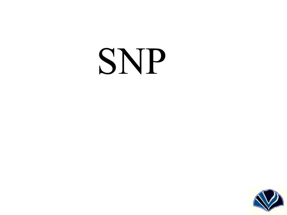 Mi az SNP (Single Nucleotide Polymorphism).