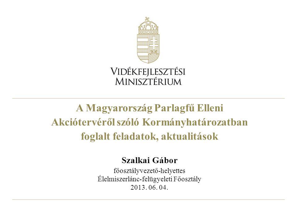 A Magyarország Parlagfű Elleni Akciótervéről szóló Kormányhatározatban foglalt feladatok, aktualitások Szalkai Gábor főosztályvezető-helyettes Élelmiszerlánc-felügyeleti Főosztály 2013.