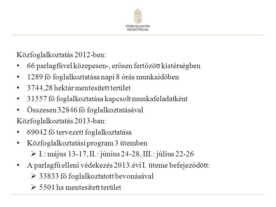 9 Közfoglalkoztatás 2012-ben: 66 parlagfűvel közepesen-, erősen fertőzött kistérségben 1289 fő foglalkoztatása napi 8 órás munkaidőben 3744,28 hektár mentesített terület 31557 fő foglalkoztatása kapcsolt munkafeladatként Összesen 32846 fő foglalkoztatásával Közfoglalkoztatás 2013-ban: 69042 fő tervezett foglalkoztatása Közfoglalkoztatási program 3 ütemben  I.: május 13-17, II.: június 24-28, III.: július 22-26 A parlagfű elleni védekezés 2013.évi I.