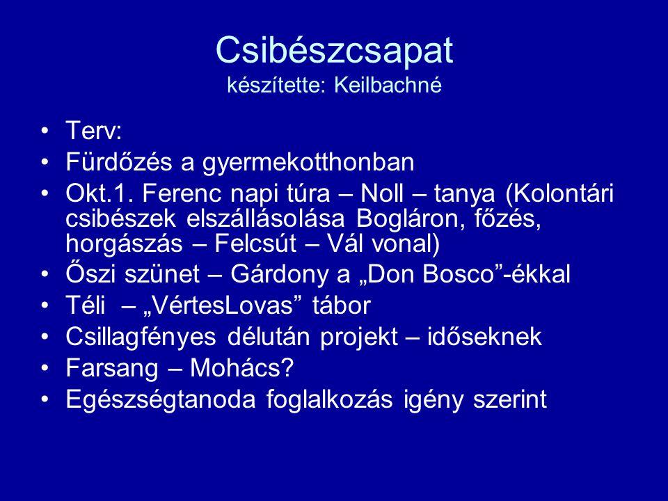 Csibészcsapat készítette: Keilbachné Terv: Fürdőzés a gyermekotthonban Okt.1.