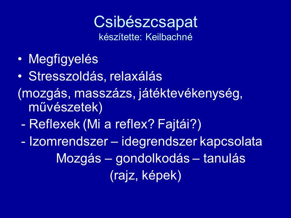 Csibészcsapat készítette: Keilbachné Megfigyelés Stresszoldás, relaxálás (mozgás, masszázs, játéktevékenység, művészetek) - Reflexek (Mi a reflex.