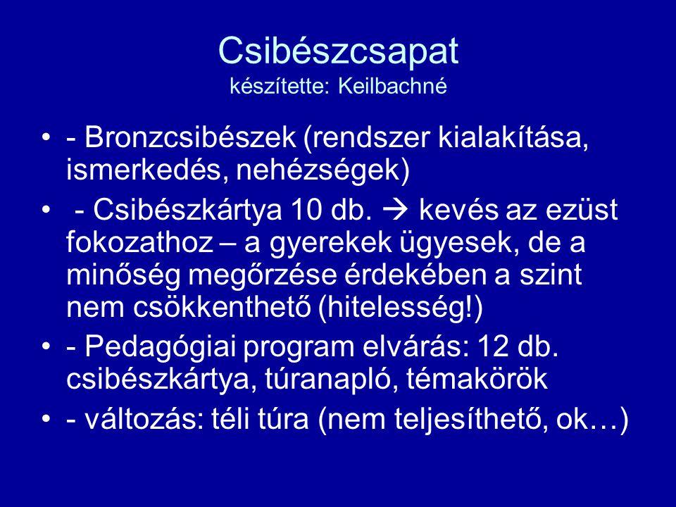 Csibészcsapat készítette: Keilbachné - Bronzcsibészek (rendszer kialakítása, ismerkedés, nehézségek) - Csibészkártya 10 db.