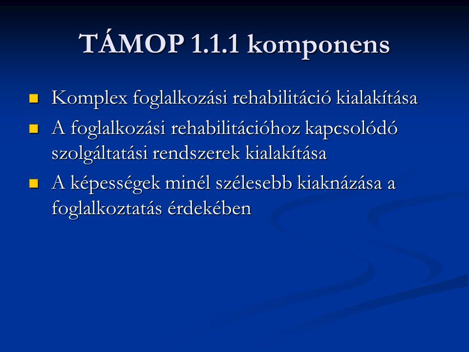 TÁMOP 1.1.1 komponens Komplex foglalkozási rehabilitáció kialakítása Komplex foglalkozási rehabilitáció kialakítása A foglalkozási rehabilitációhoz kapcsolódó szolgáltatási rendszerek kialakítása A foglalkozási rehabilitációhoz kapcsolódó szolgáltatási rendszerek kialakítása A képességek minél szélesebb kiaknázása a foglalkoztatás érdekében A képességek minél szélesebb kiaknázása a foglalkoztatás érdekében