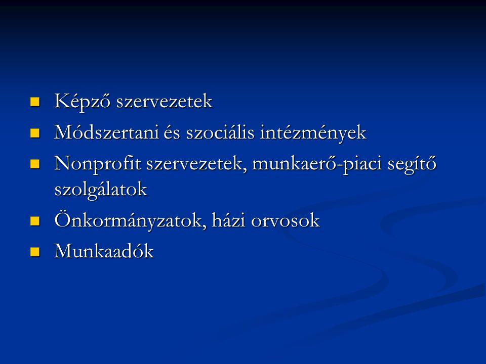 Képző szervezetek Képző szervezetek Módszertani és szociális intézmények Módszertani és szociális intézmények Nonprofit szervezetek, munkaerő-piaci se