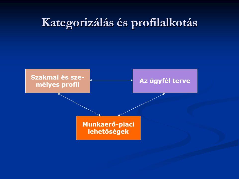 Kategorizálás és profilalkotás Munkaerő-piaci lehetőségek Szakmai és sze- mélyes profil Az ügyfél terve