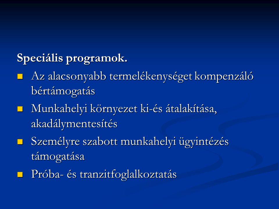 Speciális programok. Az alacsonyabb termelékenységet kompenzáló bértámogatás Az alacsonyabb termelékenységet kompenzáló bértámogatás Munkahelyi környe
