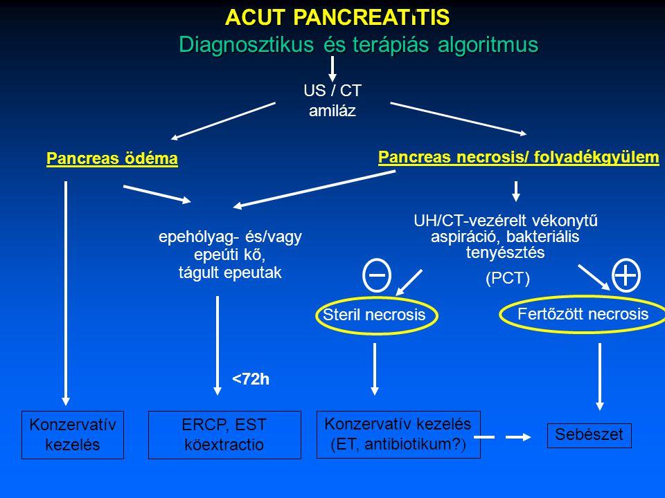 ACUT PANCREATITIS ACUT PANCREATITIS Diagnosztikus és terápiás algoritmus Diagnosztikus és terápiás algoritmus US / CT amiláz Pancreas ödéma Pancreas necrosis/ folyadékgyülem epehólyag- és/vagy epeúti kő, tágult epeutak Konzervatív kezelés ERCP, EST köextractio UH/CT-vezérelt vékonytű aspiráció, bakteriális tenyésztés Konzervatív kezelés (ET, antibiotikum.