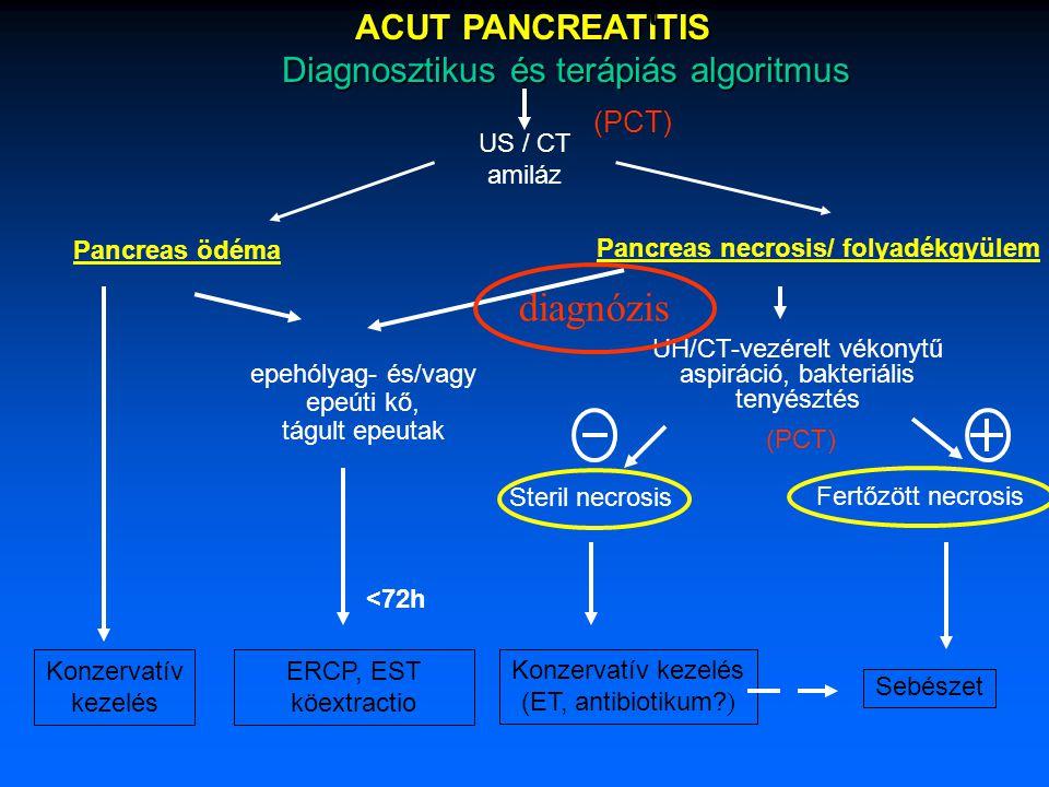Klinikai tünetek UH / CT fájdalom fogyás steatorrhoea (diab.
