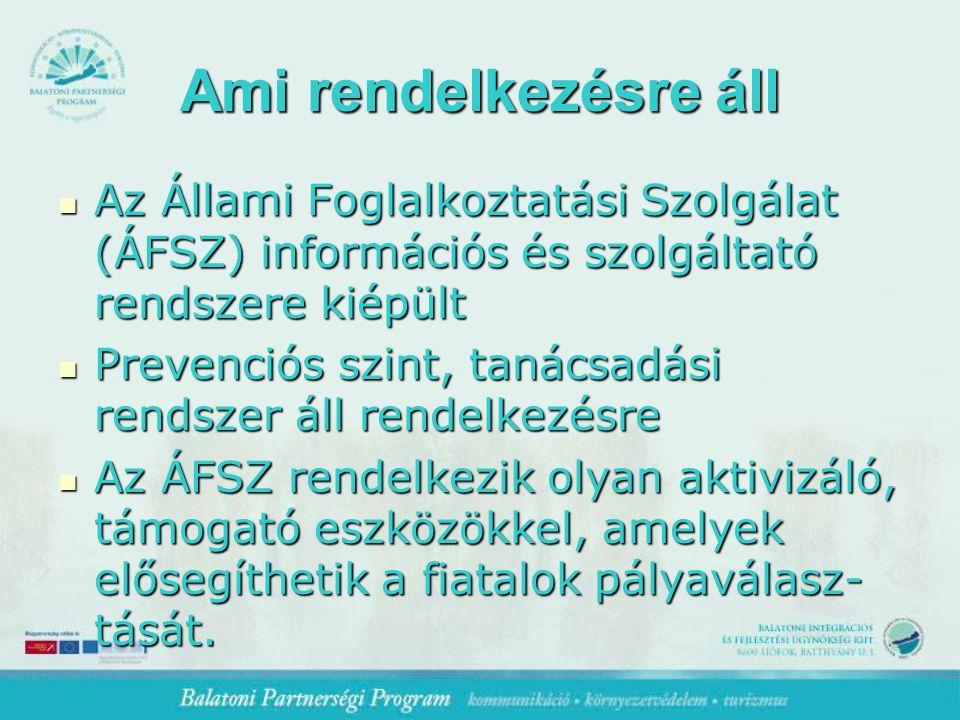 Ami rendelkezésre áll Az Állami Foglalkoztatási Szolgálat (ÁFSZ) információs és szolgáltató rendszere kiépült Az Állami Foglalkoztatási Szolgálat (ÁFSZ) információs és szolgáltató rendszere kiépült Prevenciós szint, tanácsadási rendszer áll rendelkezésre Prevenciós szint, tanácsadási rendszer áll rendelkezésre Az ÁFSZ rendelkezik olyan aktivizáló, támogató eszközökkel, amelyek elősegíthetik a fiatalok pályaválasz- tását.