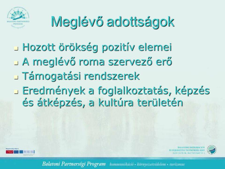 Meglévő adottságok Hozott örökség pozitív elemei Hozott örökség pozitív elemei A meglévő roma szervező erő A meglévő roma szervező erő Támogatási rendszerek Támogatási rendszerek Eredmények a foglalkoztatás, képzés és átképzés, a kultúra területén Eredmények a foglalkoztatás, képzés és átképzés, a kultúra területén