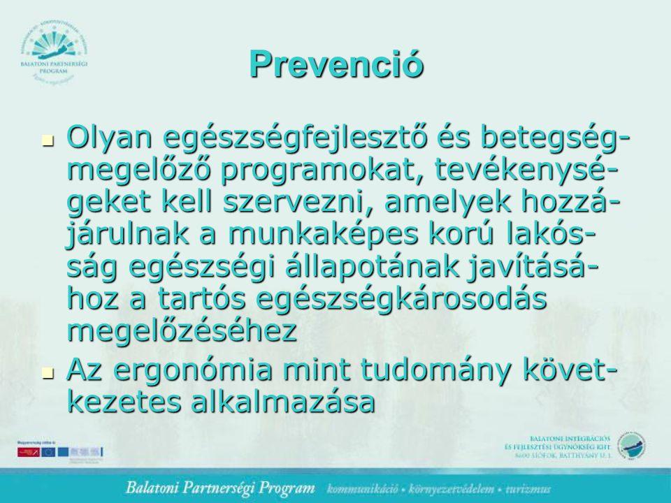 Prevenció Olyan egészségfejlesztő és betegség- megelőző programokat, tevékenysé- geket kell szervezni, amelyek hozzá- járulnak a munkaképes korú lakós- ság egészségi állapotának javításá- hoz a tartós egészségkárosodás megelőzéséhez Olyan egészségfejlesztő és betegség- megelőző programokat, tevékenysé- geket kell szervezni, amelyek hozzá- járulnak a munkaképes korú lakós- ság egészségi állapotának javításá- hoz a tartós egészségkárosodás megelőzéséhez Az ergonómia mint tudomány követ- kezetes alkalmazása Az ergonómia mint tudomány követ- kezetes alkalmazása