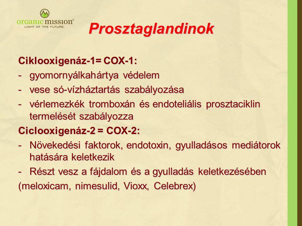 Prosztaglandinok Ciklooxigenáz-1= COX-1: -gyomornyálkahártya védelem -vese só-vízháztartás szabályozása -vérlemezkék tromboxán és endoteliális prosztaciklin termelését szabályozza Ciclooxigenáz-2 = COX-2: -Növekedési faktorok, endotoxin, gyulladásos mediátorok hatására keletkezik -Részt vesz a fájdalom és a gyulladás keletkezésében (meloxicam, nimesulid, Vioxx, Celebrex)