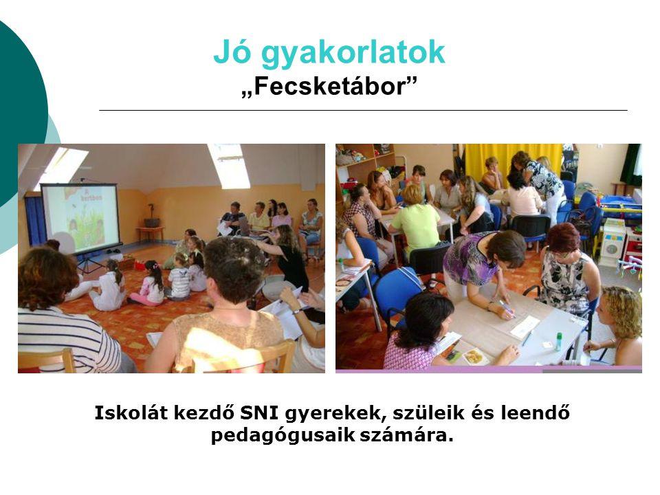 """Jó gyakorlatok """"Fecsketábor"""" Iskolát kezdő SNI gyerekek, szüleik és leendő pedagógusaik számára."""