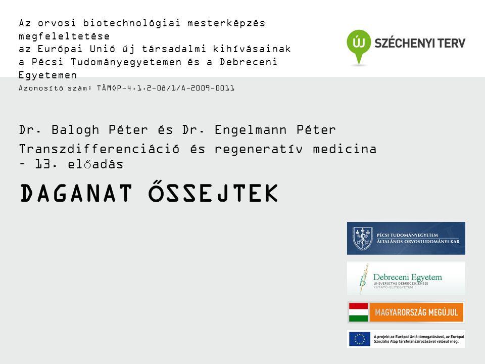 DAGANAT ŐSSEJTEK Az orvosi biotechnológiai mesterképzés megfeleltetése az Európai Unió új társadalmi kihívásainak a Pécsi Tudományegyetemen és a Debreceni Egyetemen Azonosító szám: TÁMOP-4.1.2-08/1/A-2009-0011 Dr.