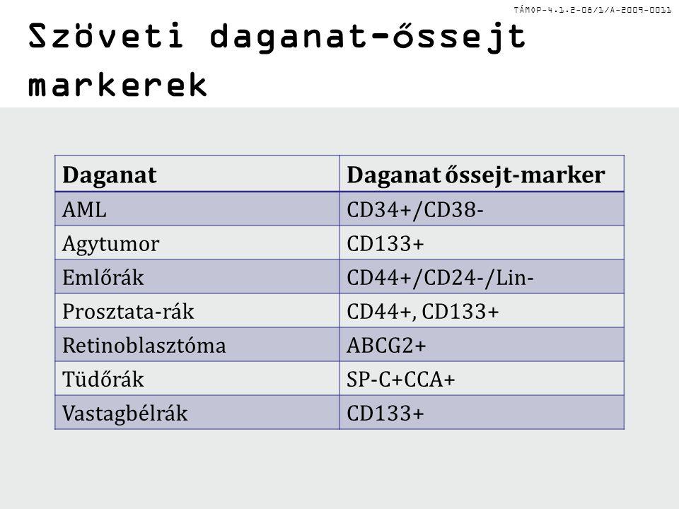 TÁMOP-4.1.2-08/1/A-2009-0011 Szöveti daganat-őssejt markerek DaganatDaganat őssejt-marker AMLCD34+/CD38- AgytumorCD133+ EmlőrákCD44+/CD24-/Lin- Prosztata-rákCD44+, CD133+ RetinoblasztómaABCG2+ TüdőrákSP-C+CCA+ VastagbélrákCD133+