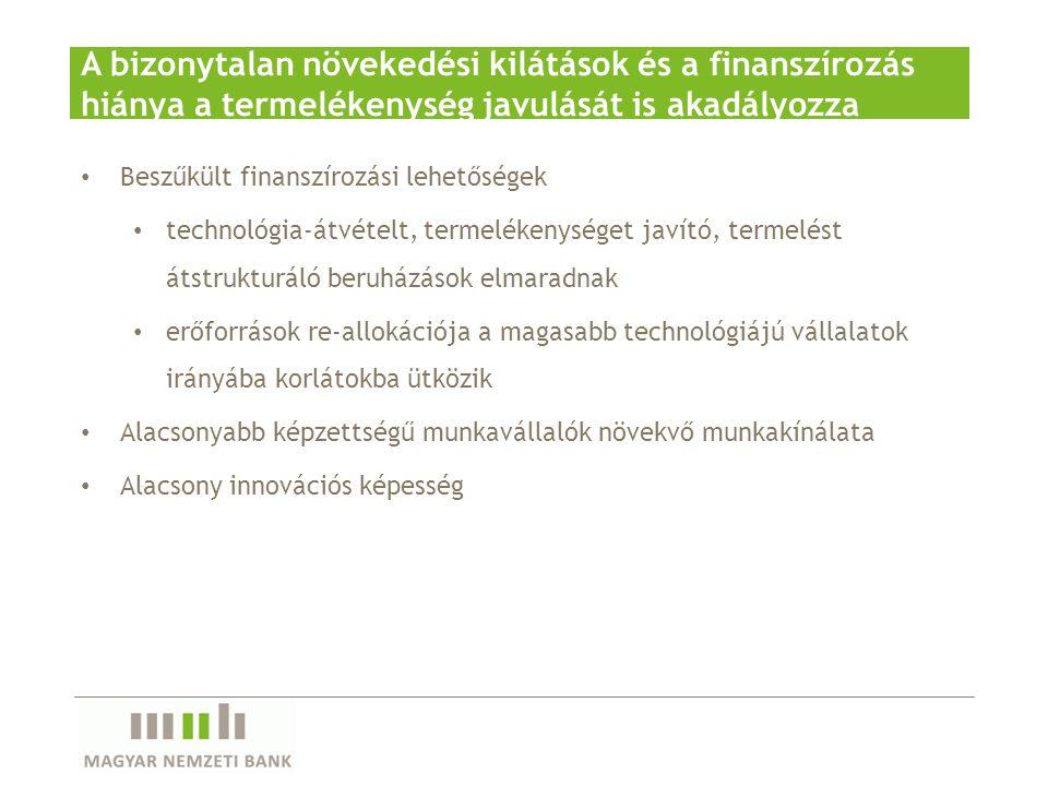 A bizonytalan növekedési kilátások és a finanszírozás hiánya a termelékenység javulását is akadályozza Beszűkült finanszírozási lehetőségek technológi