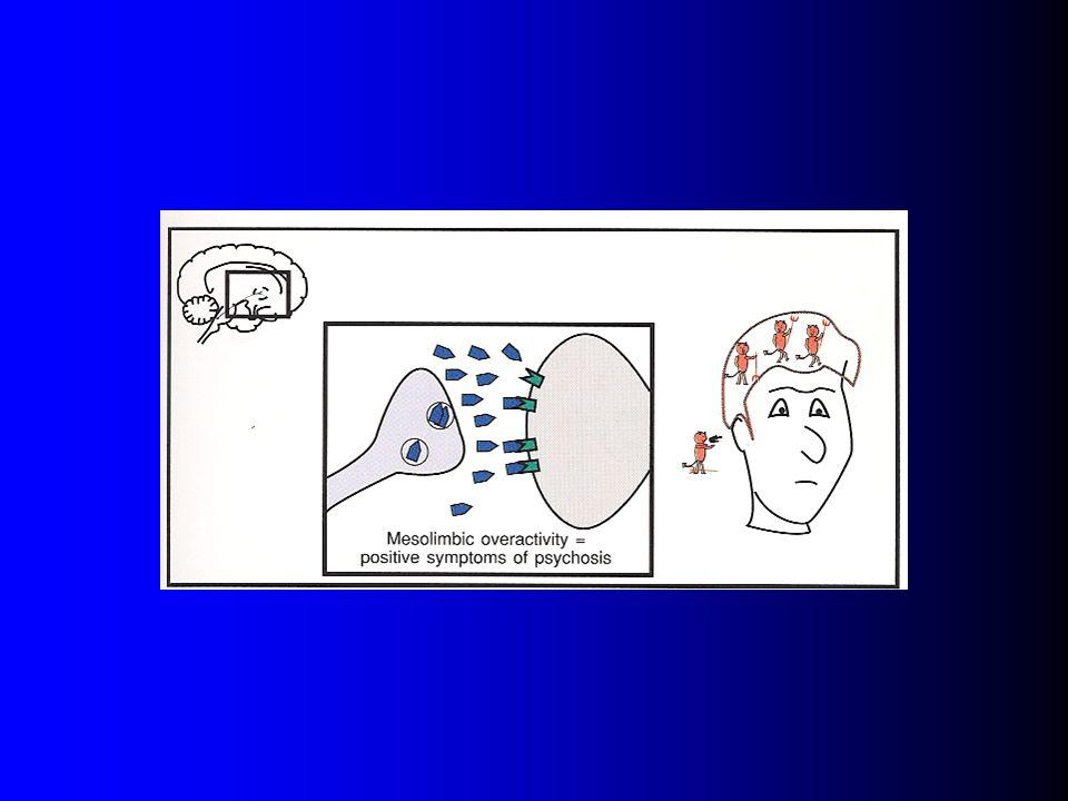 Dopamin-szerotonin hypothesis A mezolimbikus dopaminerg neuronok túlaktivitása okozza a pozitív tüneteket ( D1:D2 arány csökkent, D2 receptor túlsúly