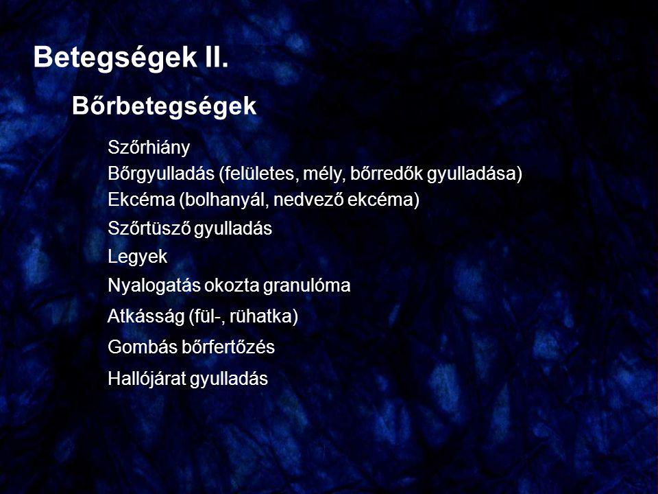 Betegségek II. Bőrbetegségek Szőrhiány Bőrgyulladás (felületes, mély, bőrredők gyulladása) Ekcéma (bolhanyál, nedvező ekcéma) Szőrtüsző gyulladás Legy