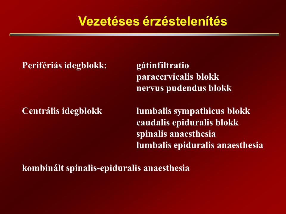 Vezetéses érzéstelenítés Perifériás idegblokk:gátinfiltratio paracervicalis blokk nervus pudendus blokk Centrális idegblokklumbalis sympathicus blokk caudalis epiduralis blokk spinalis anaesthesia lumbalis epiduralis anaesthesia kombinált spinalis-epiduralis anaesthesia