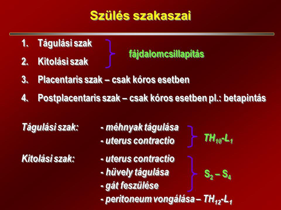 Szülés szakaszai 1.Tágulási szak 2.Kitolási szak 3.Placentaris szak – csak kóros esetben 4.Postplacentaris szak – csak kóros esetben pl.: betapintás Tágulási szak: - méhnyak tágulása - uterus contractio Kitolási szak:- uterus contractio -hüvely tágulása - gát feszülése - peritoneum vongálása – TH 12 -L 1 1.Tágulási szak 2.Kitolási szak 3.Placentaris szak – csak kóros esetben 4.Postplacentaris szak – csak kóros esetben pl.: betapintás Tágulási szak: - méhnyak tágulása - uterus contractio Kitolási szak:- uterus contractio -hüvely tágulása - gát feszülése - peritoneum vongálása – TH 12 -L 1 fájdalomcsillapítás S 2 – S 4 TH 10 -L 1